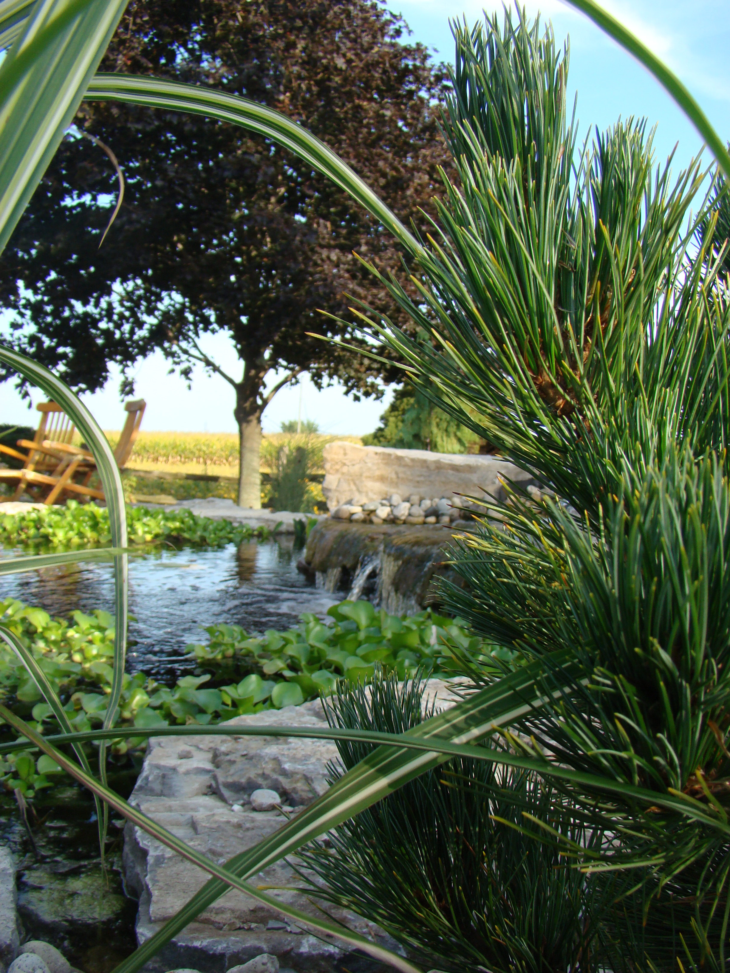 Water features rural roots landscape and design chatham for Landscape design ontario